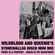 Wildblood and Queenie's Stonewall50 Disco Mini Mix image