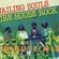 Wailing Souls Tribute Mix image