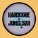 Hardcore Junglism Mix image