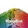 Melodica 13 April 2015 image