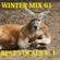 Winter Mix 61 - Best of Vocals Vol. 1 image