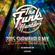 The Funk Hunters 2015 SHAMBHALA MIX image