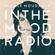 In The MOOD - Episode 176 - LIVE from Piknic Electronik, Montreal  image