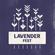 Lavender Fest Ambient & Lounge Mix image