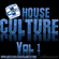 Craig Culture Presents... House Culture Vol 1 image