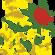 K-Rose image