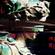 ARDX - Lost Signal image