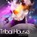 tribal house mix 2 image
