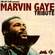 Marvin Gaye Tribute image