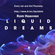 Liquid Dreams 085 Yearmix 2020 with Rom Heavven image