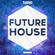 Best Of Future House & Mashups (2017 Mix) image