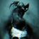 Skulls & Spells (Halloween 2021 Mix) image