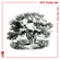 001 Kudo Sol - The Yew Tree (Taxus baccata) image