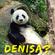 Pandan Dolofan / Chasing Butterflies / Iubirile Ciudate Se Termina Cu O Promisiune image