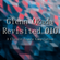 Revisited 010:  A Classic Trance Compilation (2021) image