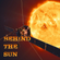 13th February 2021 Behind the Sun image