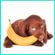 cocos, bananas image