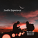 Soulful Experience02 Mixed By LuNa image