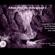 Echos from the Underground volume 3 @ CTRL ROOM - November 16 2019 image