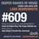 Deeper Shades Of House #609 w/ exclusive guest mix by INGO SAENGER image