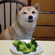 Based Broccoli 12.11.19 image