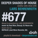 Deeper Shades Of House #677 w/ exclusive guest mix by REPHLEX image