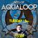 Pulsedriver - Best Of Aqualoop Records Vol.1 (DJ Mix) image
