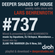 Deeper Shades Of House #737 w/ exclusive guest mix by 2LANI THE WARRIOR image