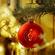 CHRISTMAS LOUNGE image