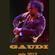 GAUDI - mix 2012 image