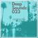 Deepsoul - Deepsoundz 023 image