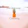 Drab Cafe & Lounge - Castaway image