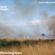 Mondegreen Records - 15th June 2021 image
