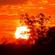 Sunday Sunrise 2 image