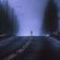 Robert Zielony - Midi Isolation image