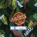 SlowBounce Radio #350 with Dj Septik - Dancehall, Tropical Bass image