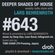 Deeper Shades Of House #643 w/ exclusive guest mix by TOMI CHAIR image