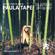Paula Tape - Music for Plants ep.6 (Live on Radio Raheem) image