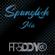Latin Spanglish Mix 2020 image