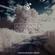 "Traveler's ""Laurel Canyon Dreamstate"" Mix image"