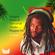 Reggae Roots & Dancehall Thriller - Reggae Mix image