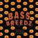 Bass Breedz Vol.17 (Halloween) image