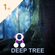Deep Tree image