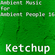Ambient Music for Ambient People 16: Ketchup image