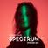 Joris Voorn Presents: Spectrum Radio 206 image