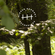 Hidden Harmony 18.06.21 image