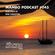 Cafe Mambo Ibiza Podcast #045 - Guest Mix from Erik Hagleton image