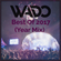 Wado Best Of 2017 (Year Mix) image