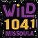 104.1 Wild 30 minuet mix image