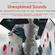 Unexplained Sounds - The Recognition Test # 106 image